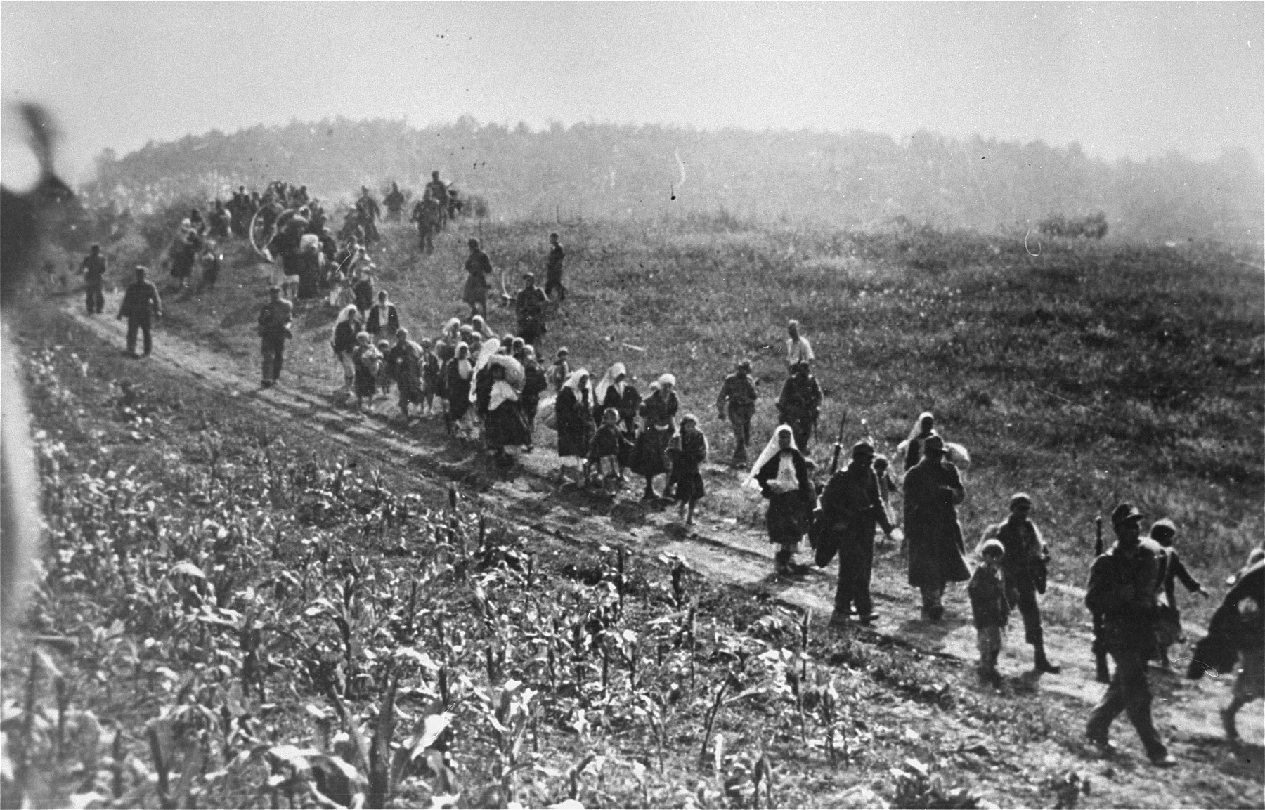 """German soldiers, aided by Ustasa collaborators, lead a column of Serbs to the Sabac internment camp during anti-partisan """"cleansing"""" operations in the Macva region."""