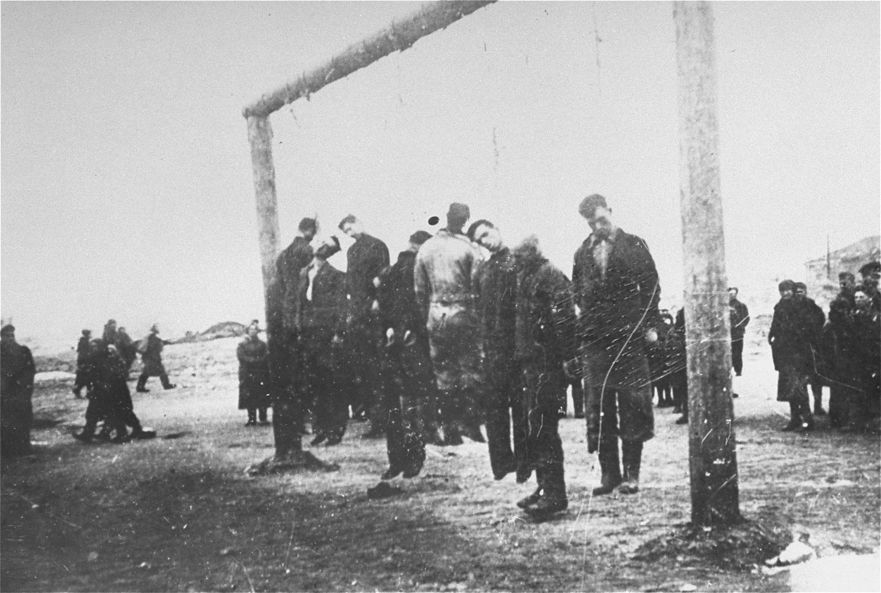 Execution by hanging of members of the Lvov Ghetto Judenrat.