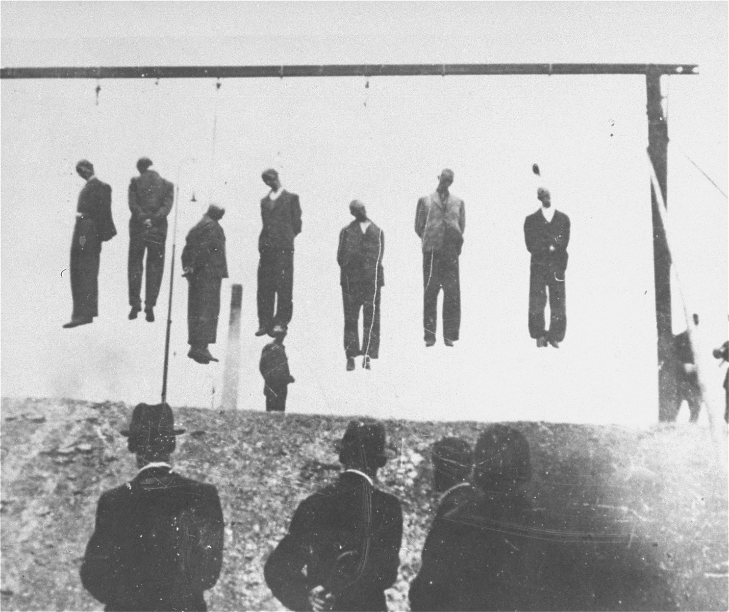 Execution by hanging of Jews from Lvov.