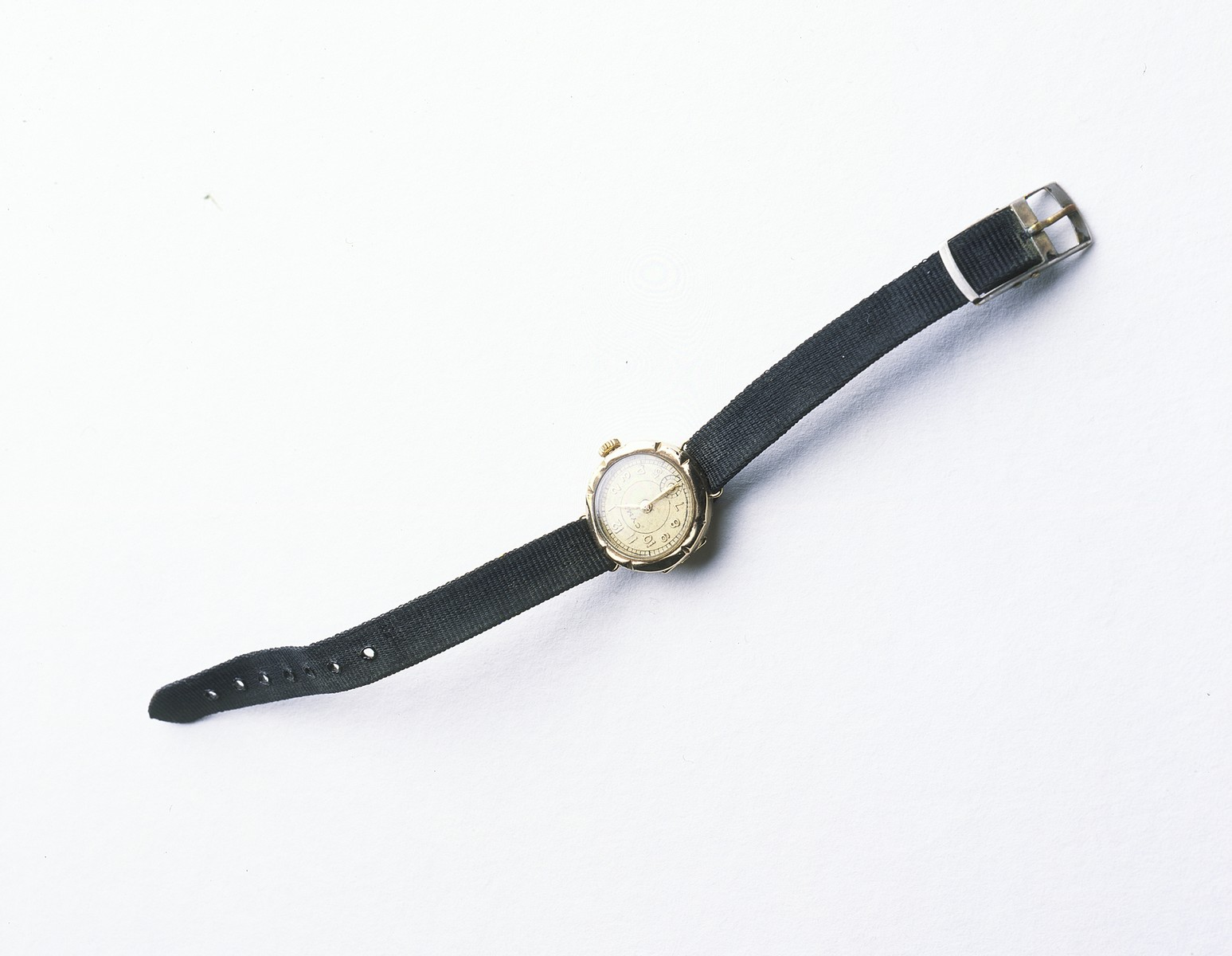A watch given to Anna Cheszes by her rescuer Madzia Strzelczyk.    In May 1943, Dora Kaplan was able to smuggle a women's gold watch out of the Bialystok ghetto via Michal Kempinski for her daughter, Pola (later Anna Strzelczyk).  In the late 1960s, Madzia visited Anna and gave her the watch as a high school graduation gift with no explanation.  Anna was not interested in the watch.  Anna learned the truth about her birth and the watch only after Madzia's death in 1972.