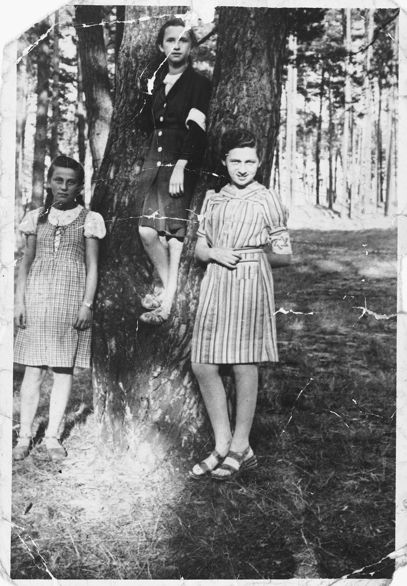 Three Jewish teenage girls wearing armbands pose by a tree in a forest in Olkusz.   Pictured from left to right are Hela Kolin, Macner and Wachtman.