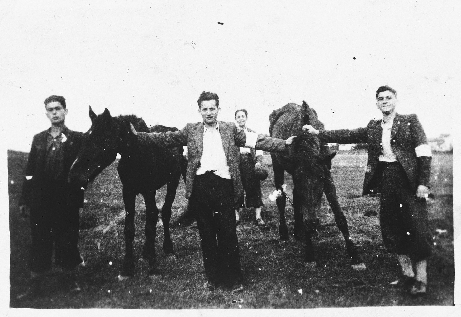 Jewish youth wearing armbands pose with horses in Bedzin, Poland.  Among those pictured is Jacob Bronner.