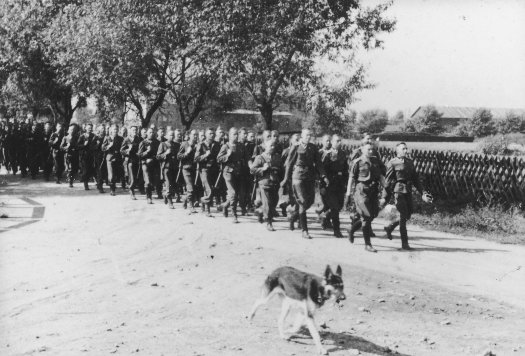 "SS men march with rifles over shoulders en route to shooting practice. A dog walks along ahead of the column in the foreground.   The original caption reads ""Mit den Kdtr.-Stab auf dem Marsch zum Schiessstand"" (on the march with the commandant's office staff to the firing range)."
