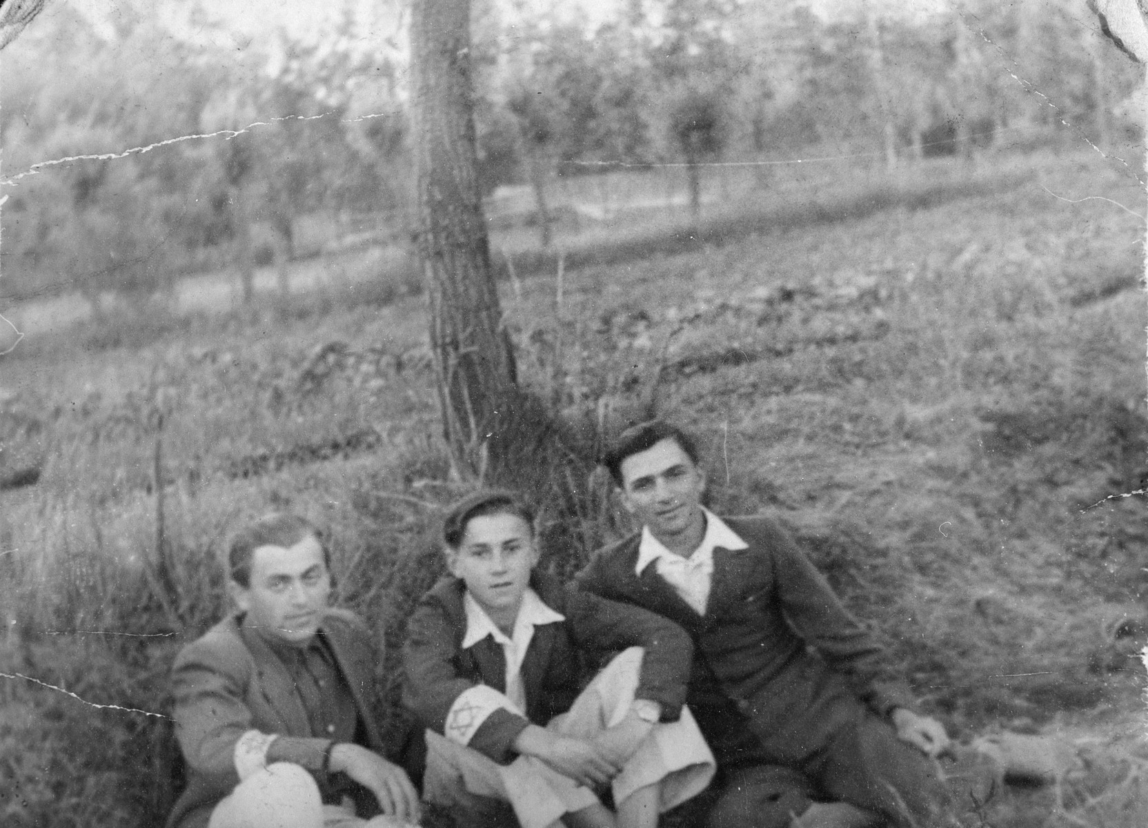"Three young Jewish men wearing armbands with a Jewish star sit in the grass under a tree in the Kozienice ghetto.  Jakub Spiegel is on the left; Baruch (Buzek) Szabason is in the middle.  Jakub and Buzek both perished.  The Polish inscription on the back reads ""This picture was taken in June 1942.  This is a picture of my beloved and favorite son Buzek."""