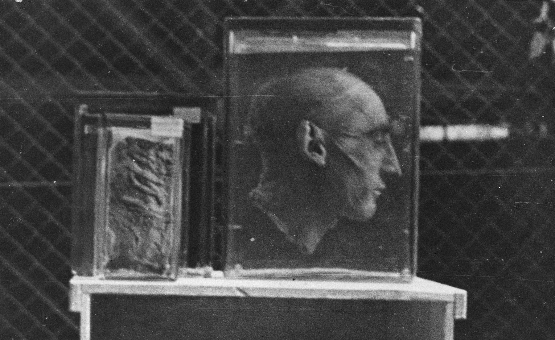 Profile view of a preserved severed head found in Buchenwald.