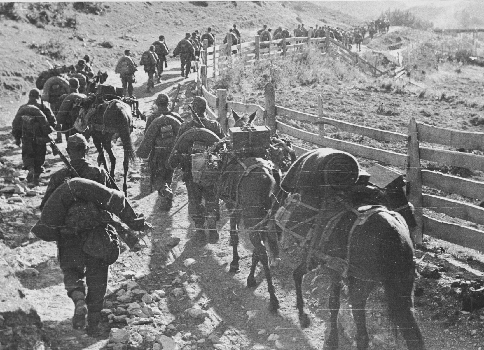 """Members of the """"Prinz Eugen"""" division climb Mount Kopaonik with their horses and supplies.  Original caption reads: """"Marching to action.""""  This is one of a collection of photographs from Friedrich Wilhelm Krueger, commander of the """"Prinz Eugen"""" Division."""