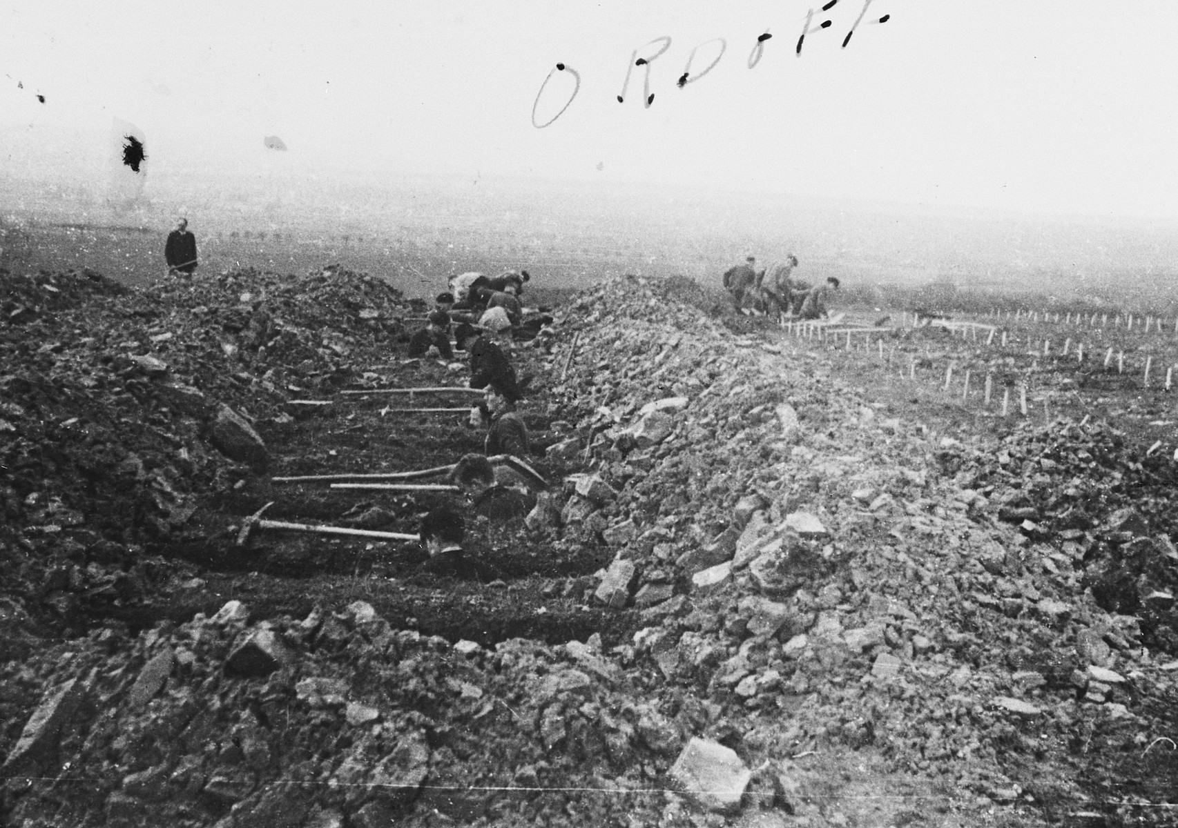 German civilians are forced to bury corpses in the Ohrdruf concentration camp.
