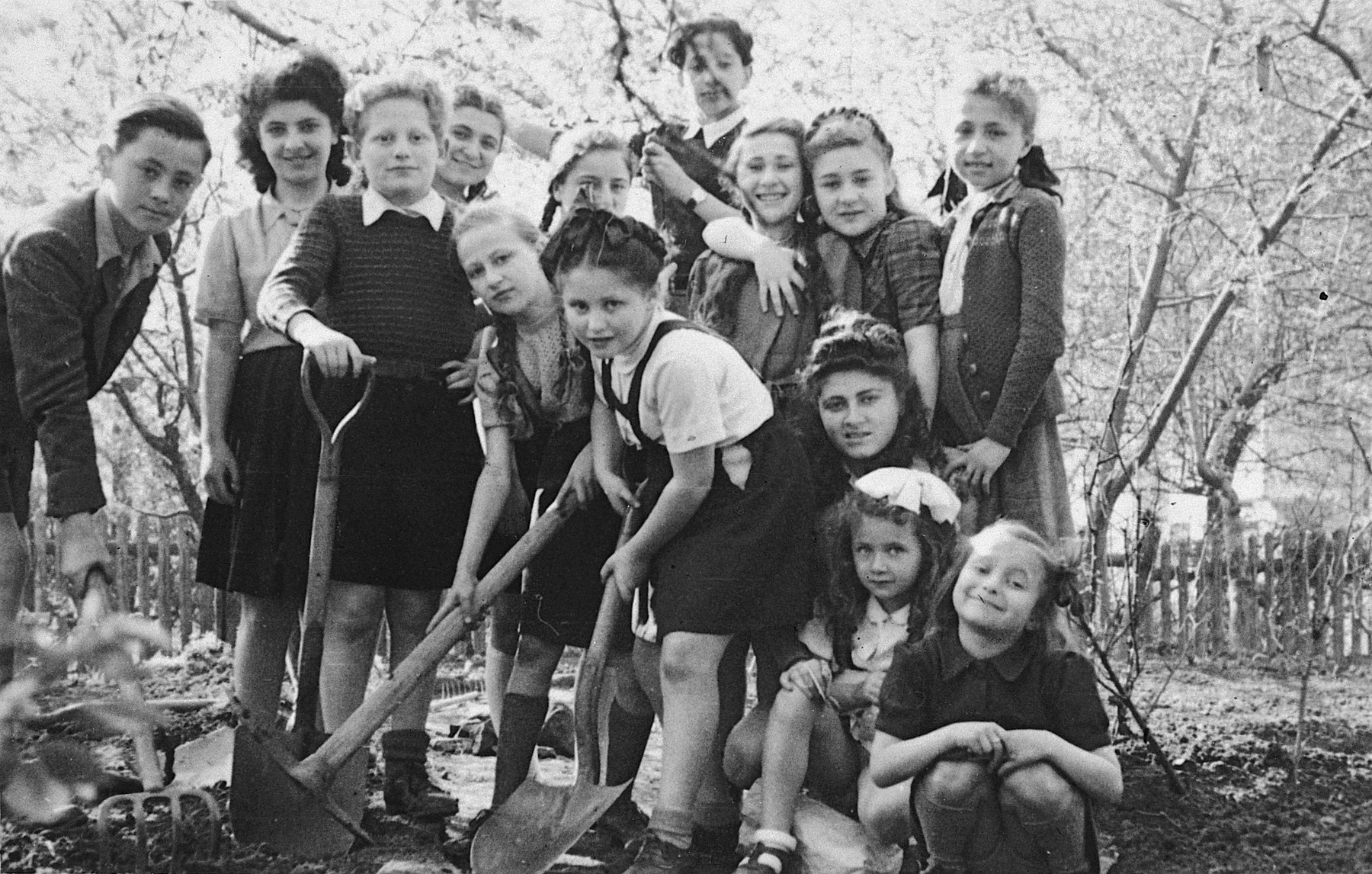A large group of children works in the garden of the Stuttgart displaced persons' camp.  Among those pictured is Lova Warszawczyk, on the far left; Bronia Graudens, fourth from the left, in back; and Hadasa Gassenbauer, in front, center, hair up in braids and holding a shovel.