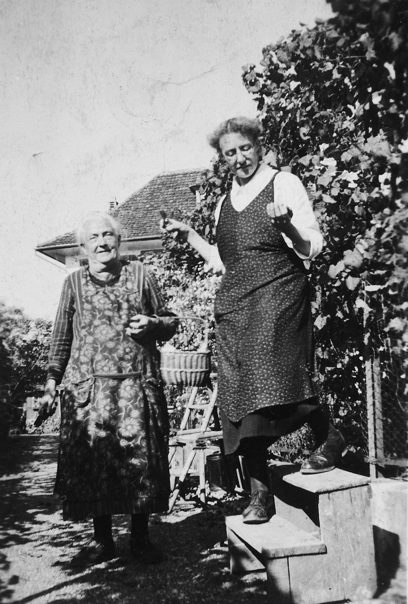 Two women work in a vineyard in Ebnet-Staefa.  Pictured are Mrs. Rieder and Aunt Elisabeth.  Aunt Elisabeth forwarded all the mail of the La Guette children back and forth to their parents.