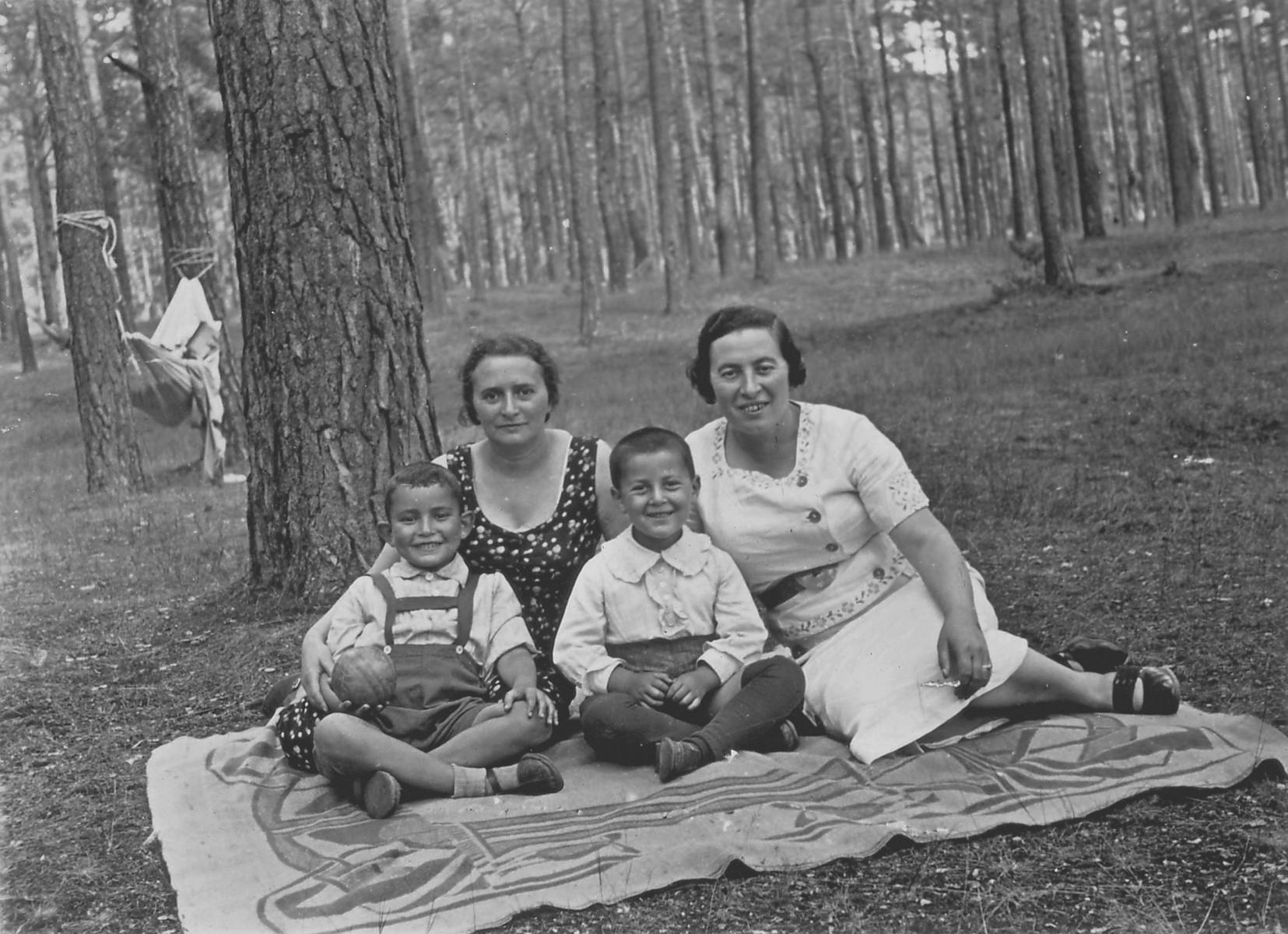 Lejb and Fejgla Melamdowicz sit on a blanket in a park with friends.