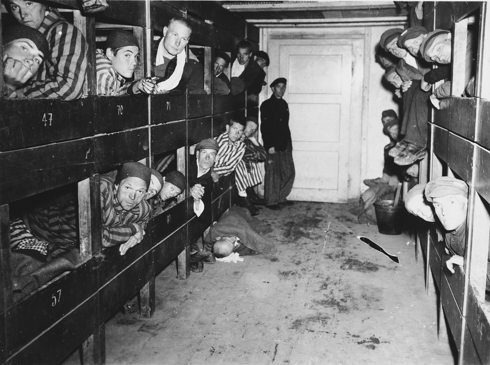 Survivors look out from their bunks inside a barrack in the Dachau concentration camp.