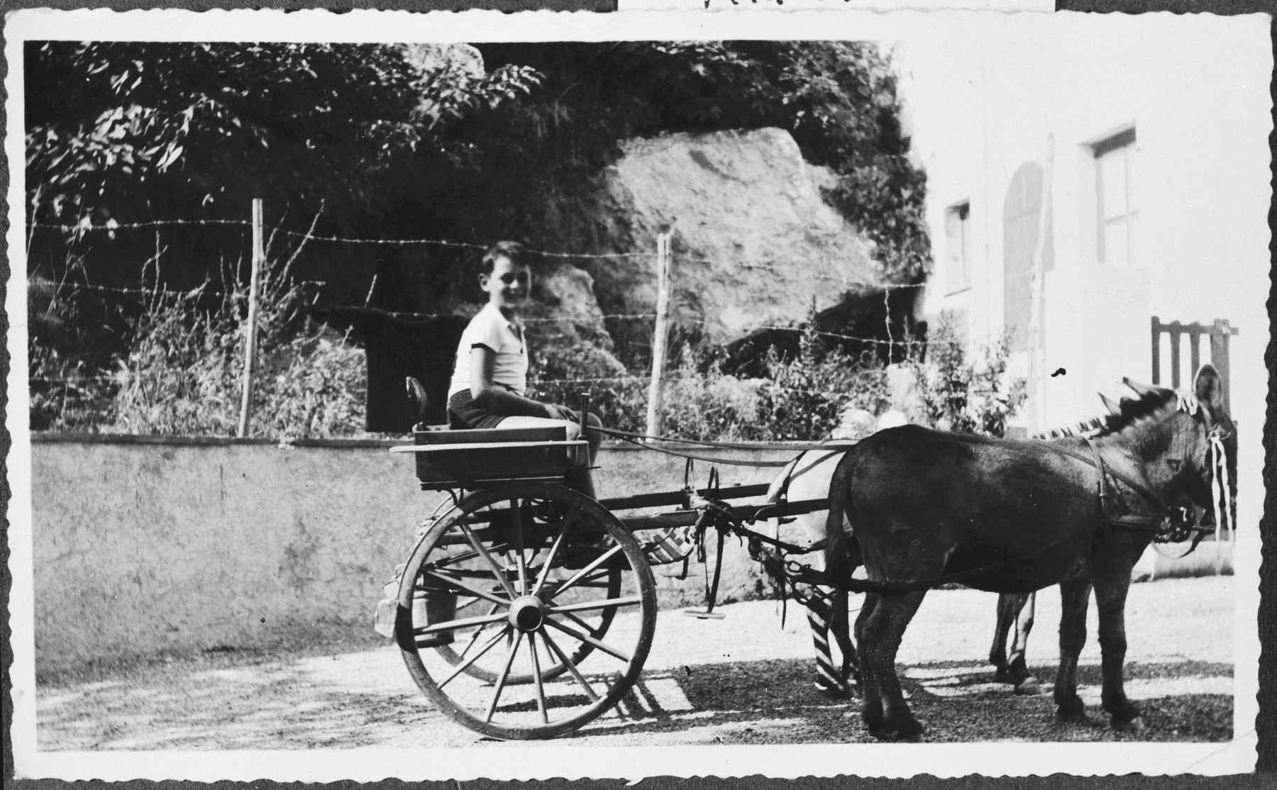 Sergio Minerbi rides a pony or donkey wagon during his summer holiday in Capri.