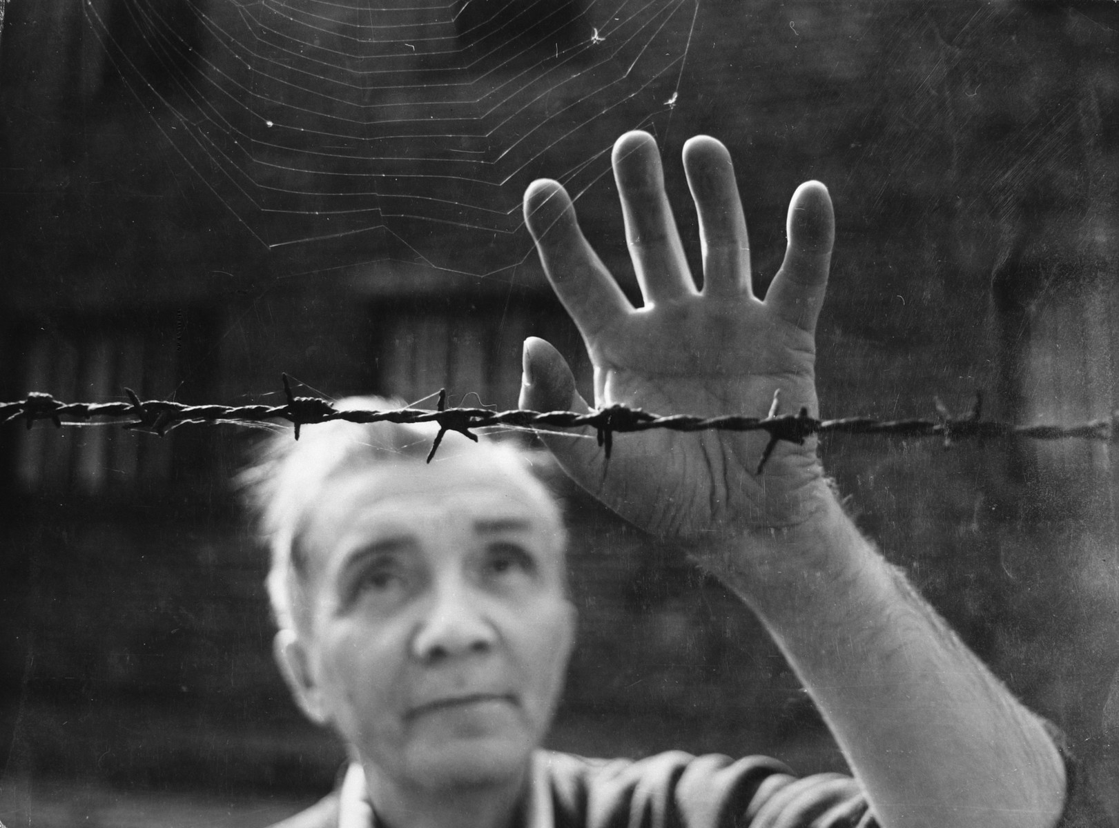 Postwar portrait of Aleksander Kulisiewicz, Polish composer and concentration camp survivor, standing in front of a barbed wire fence.