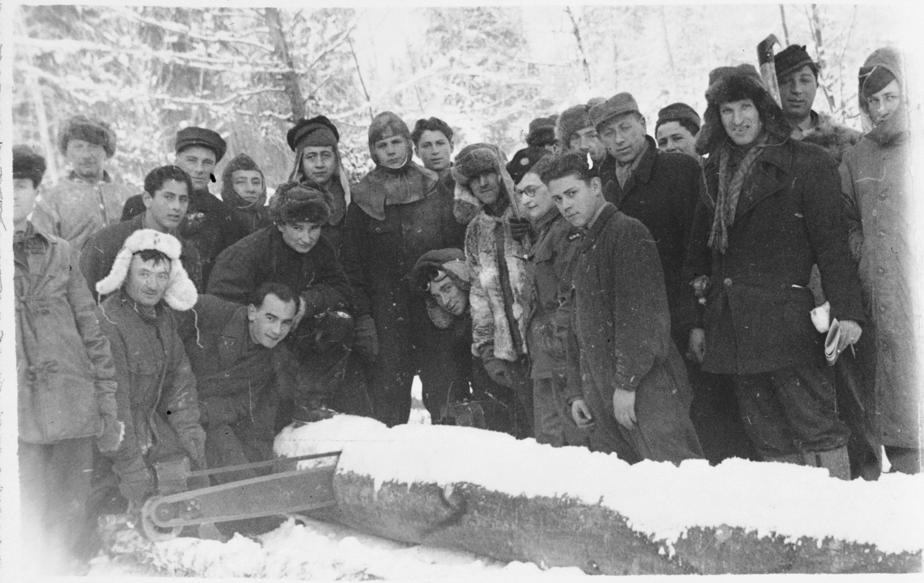 Jewish men saw a large log in the snow in either the Foehrenwald or Windsheim displaced persons' camp.