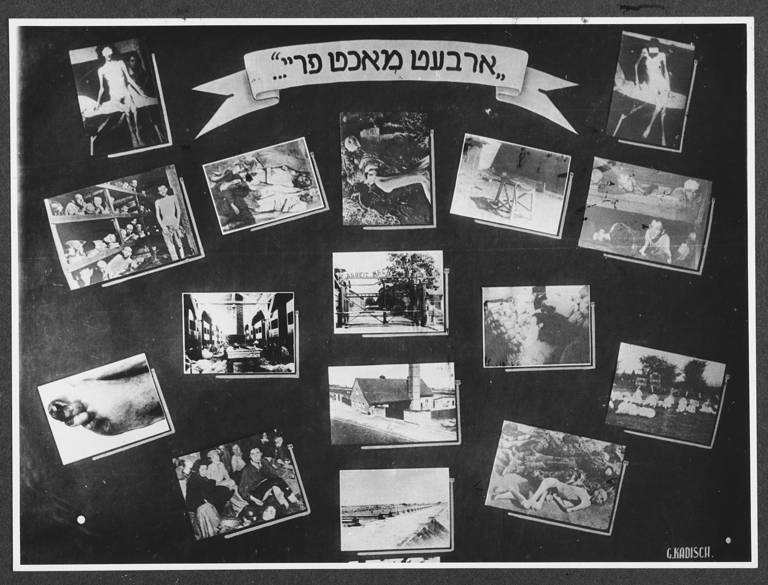 "Display panel from a photo exhibition on the Holocaust entitled, ""Work Makes Freedom..."" created by photographer George Kaddish in a displaced persons' camp.  The exhibition consisted both of photographs that he shot in the Kovno ghetto as well as other photographs he collected from other ghettos and camps."