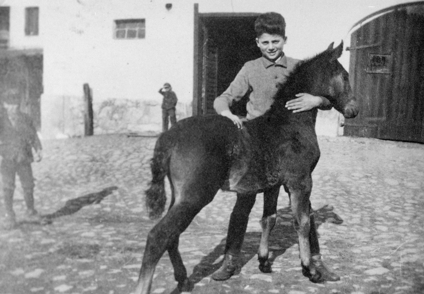A young boy pets a foal in the Gross Breesen agricultural training center.