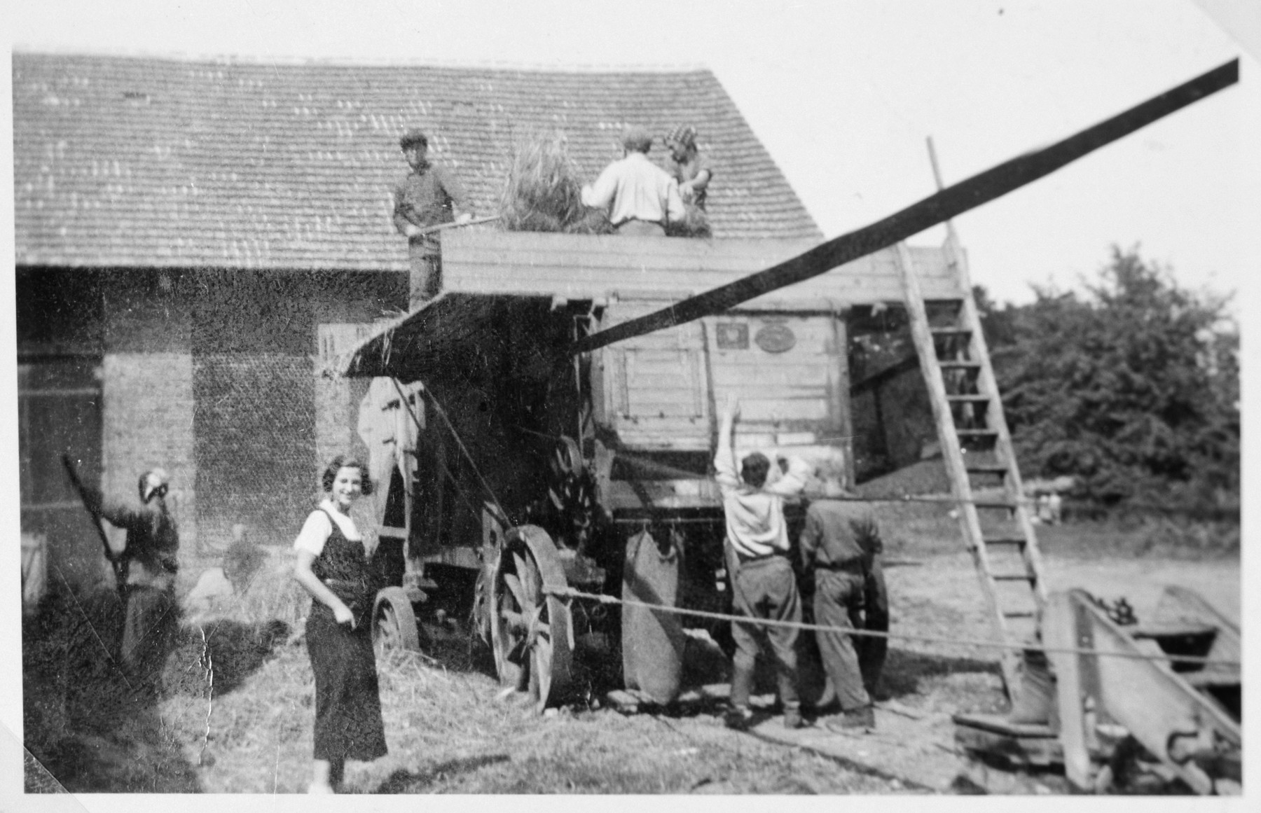 Jewish youth from the Gross Breesen vocational center unloads hay from a cart.