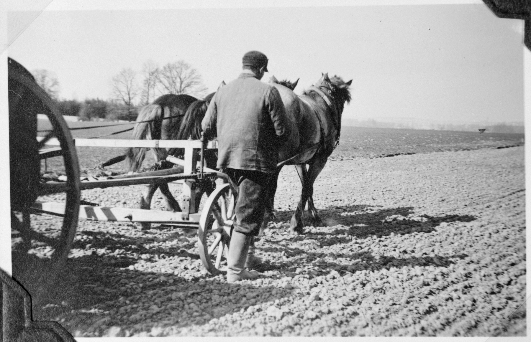 A man seen from the back ploughs a field in the Gross Breesen vocational center.