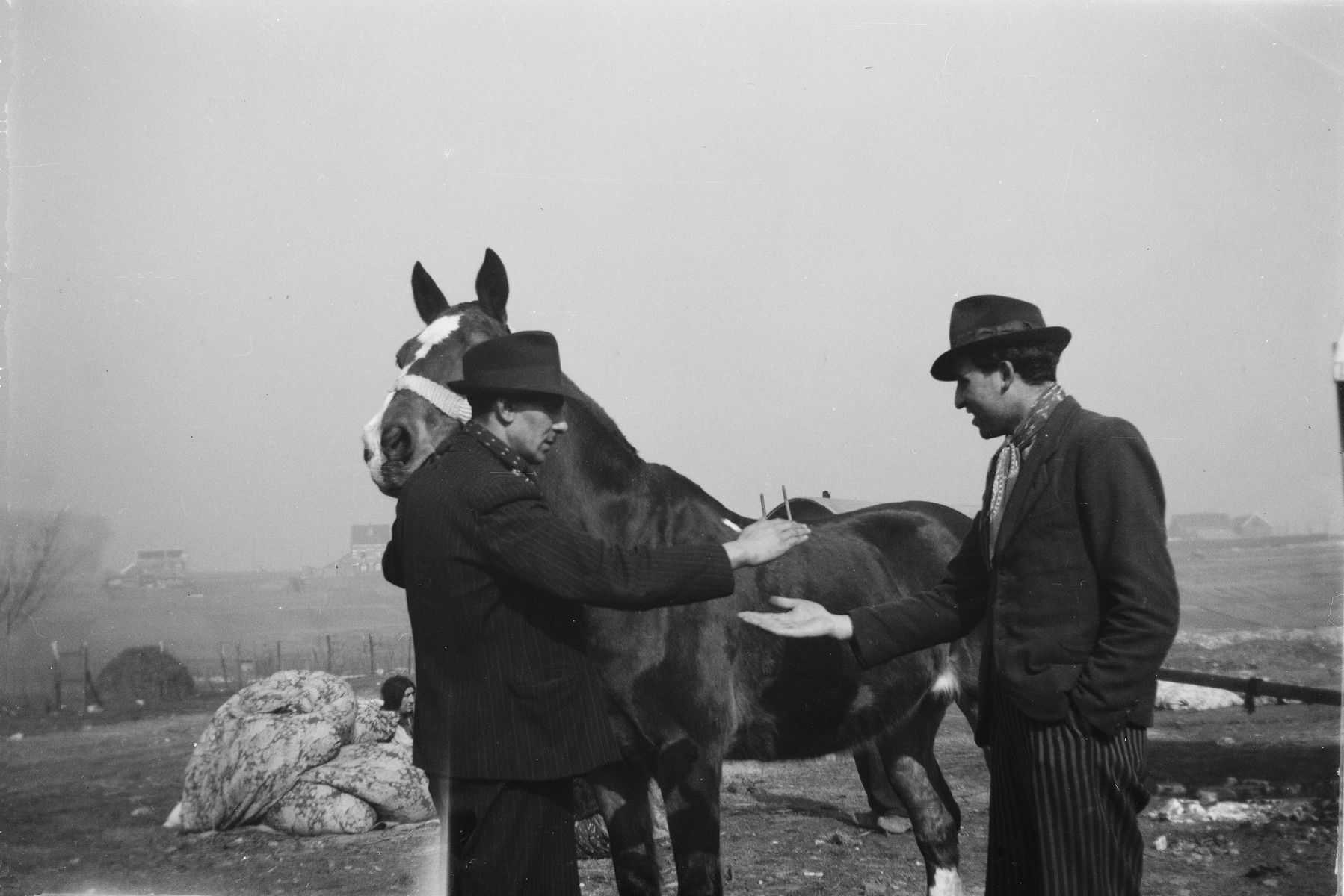 Two Romani (Gypsy) men make a deal on a horse.