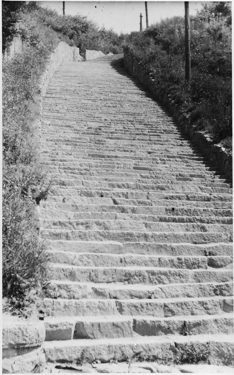 """View of the 183 steps leading from the quarry in the Mauthausen concentration camp.  Original caption reads: """"These are the 183 steps of death in Camp Mauthausen. The SS made the refuges [SIC] carry the stones on their backs and if they dropped they killed them."""""""
