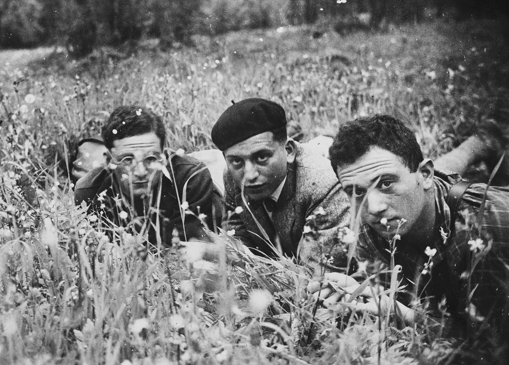 Three German-Jewish young men pose together in a grassy field of wild flowers.