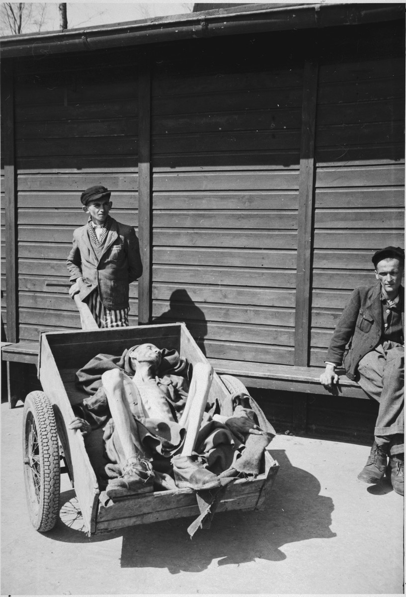 "A survivor of Buchenwald stands behind a wheelbarrow holding the corpse of a man who has just died following liberation.  The original caption reads, ""The body of a typical prisoner at the camp showing the extreme emaciations.  This patient had just died from starvation and was being hauled to the incinerator."""