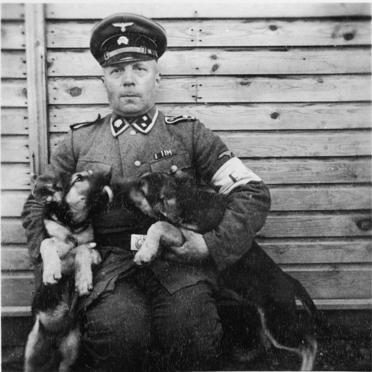 SS-man Papka poses with two puppies in the Gross-Rosen concentration camp.