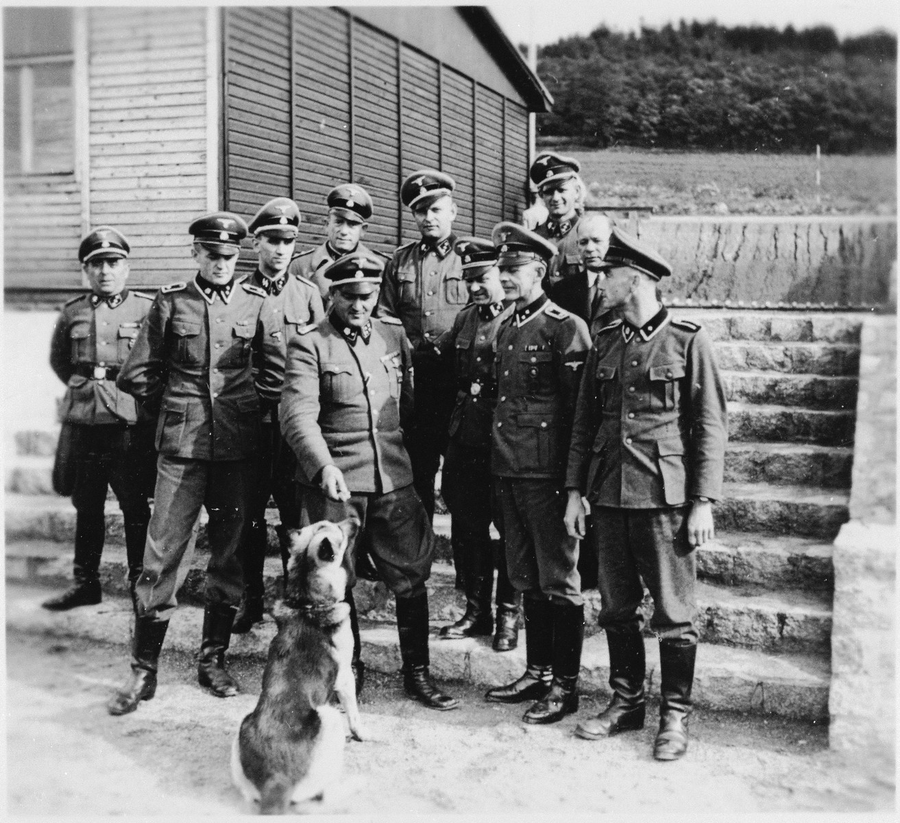 SS officers in Gross-Rosen bid farewell to SS platoon commander Hafer (who was responsible for building).  Among those pictured are the commandant, Athur Roedl (with the dog), Michl (behind him), Anton Thumann (far right) and probably Dr. Friedrich Entress (third from the left).