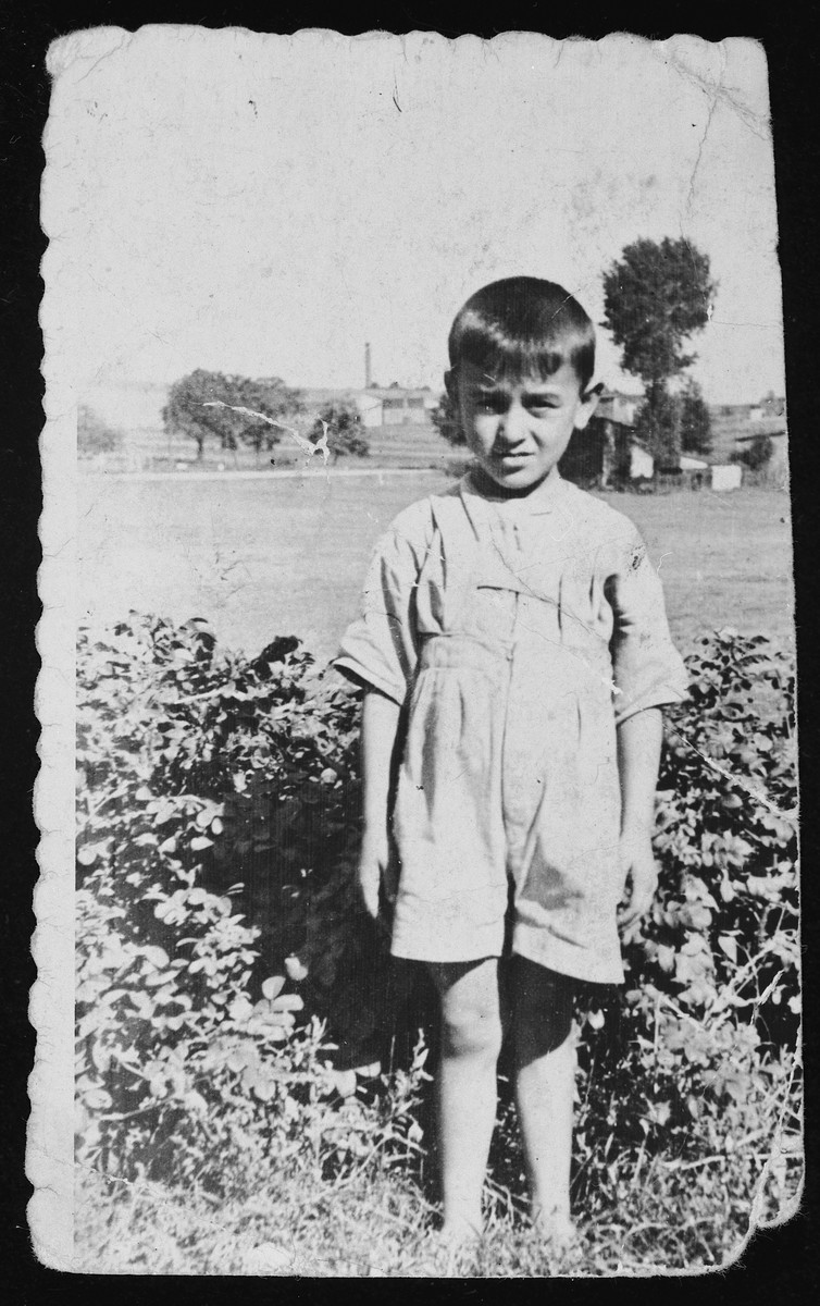 """A young Polish child who became the adopted """"brother"""" of a Jewish child in hiding stands in a field in his small village in Poland.  Pictured is Zbigniew (Zbishoo) Katarzina."""