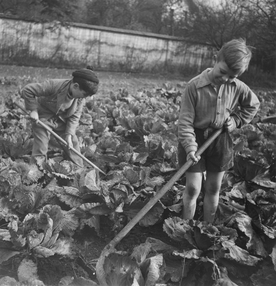 Children work in the garden of a post-war OSE home, possibly La Forge in Fontenay-aux-Roses.