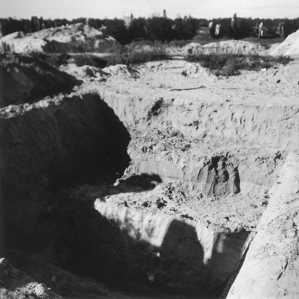 """View of a large mass grave in the Warsaw ghetto cemetery.  Joest's original caption reads: """"Next to the mass graves in which hundreds of corpses had been laid, a new one had already been dug."""""""