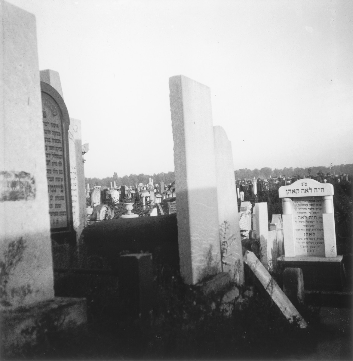 """The Jewish cemetery in the Warsaw ghetto.  Joest's original caption reads: """"From here one could gaze all the way to the horizon across a vast field of tombstones."""""""