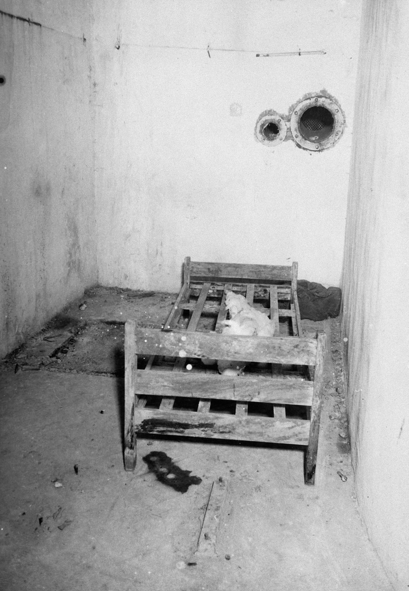 "Interior view of a circular room known as the ""Gas Chamber"" which was used as a mortuary."