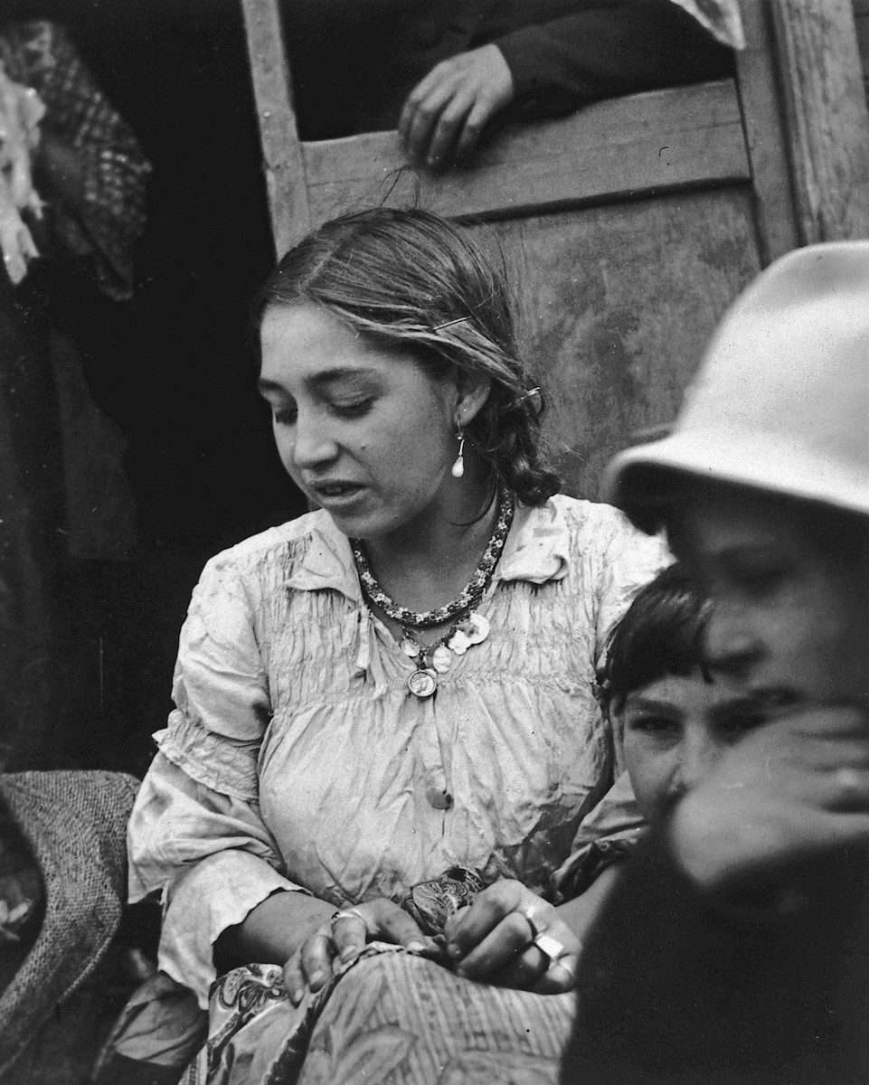 Portrait of a young Roma (Gypsy) woman gazing  downward.