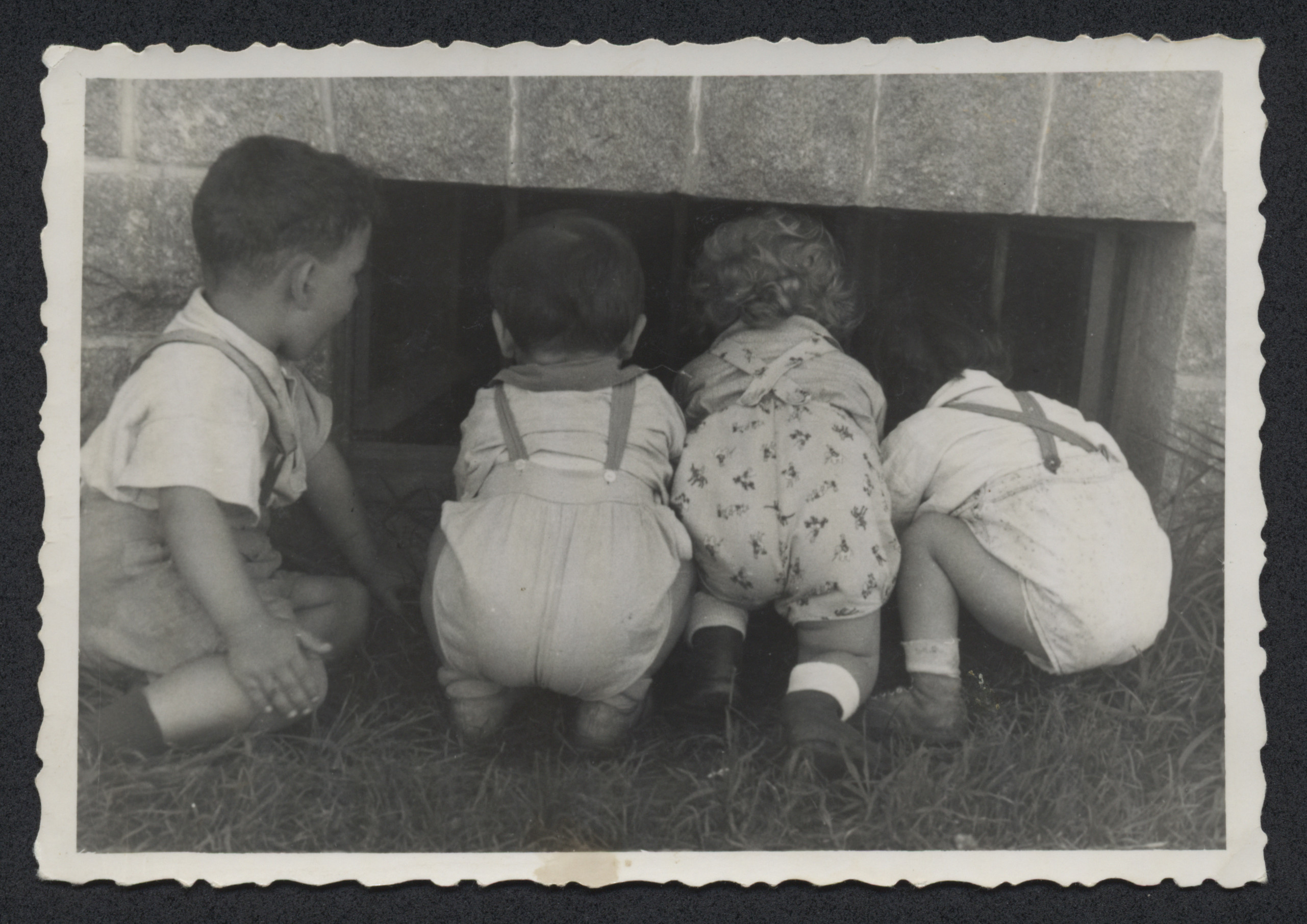 Four children peer through a basement window.  David Greenfield is pictured second from the right.