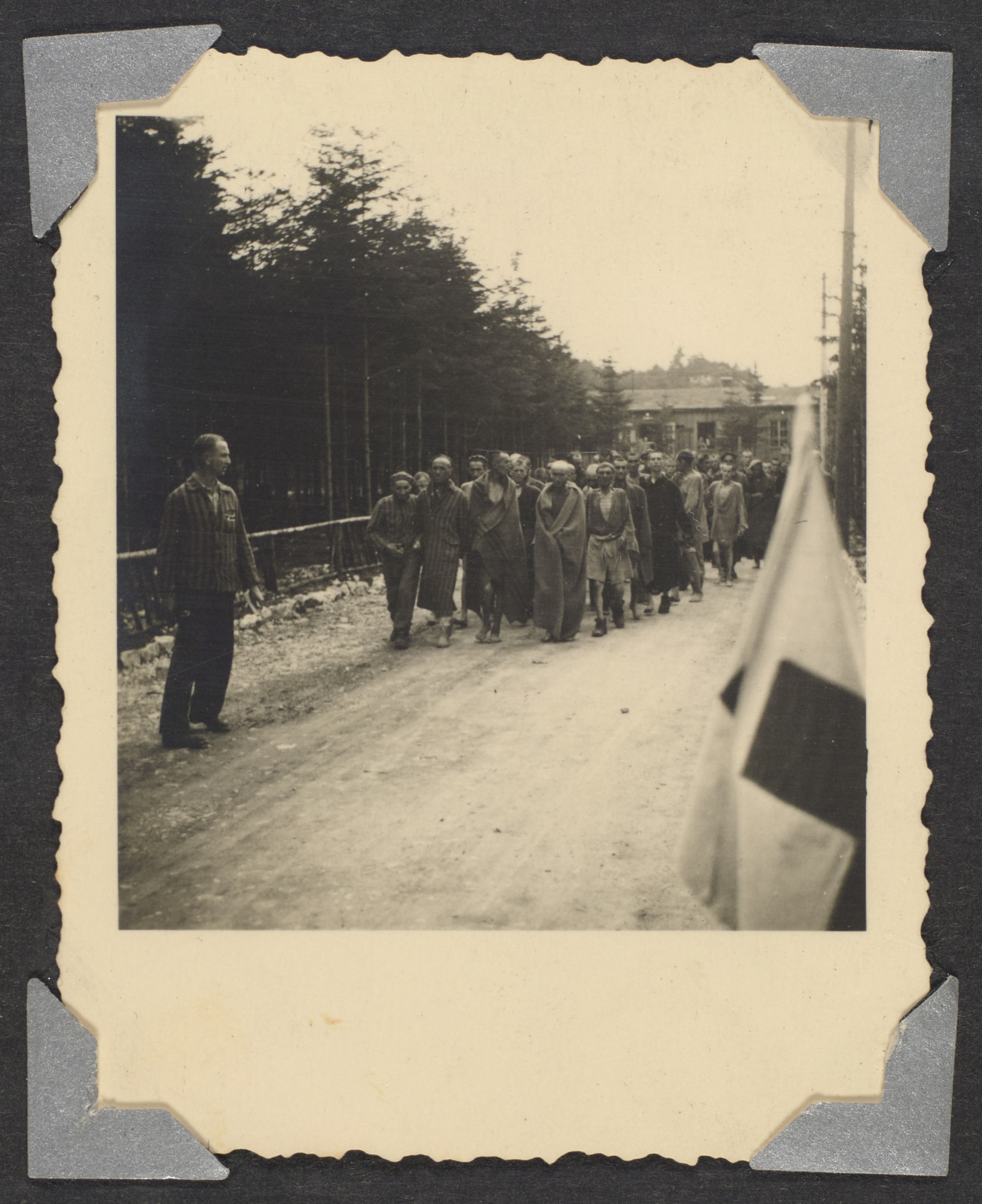 "Prisoners walk in a large group in Ebensee after liberation.  Original caption: ""Prisoners in camp"""