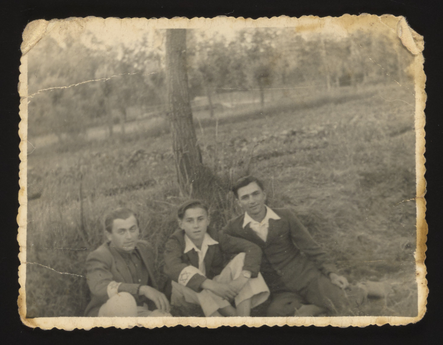 """Three young Jewish men wearing armbands with a Jewish star sit in the grass under a tree in the Kozienice ghetto.  Jakub Spiegel is on the left; Baruch (Buzek) Szabason is in the middle.  Jakub and Buzek both perished.  The Polish inscription on the back reads """"This picture was taken in June 1942.  This is a picture of my beloved and favorite son Buzek."""""""