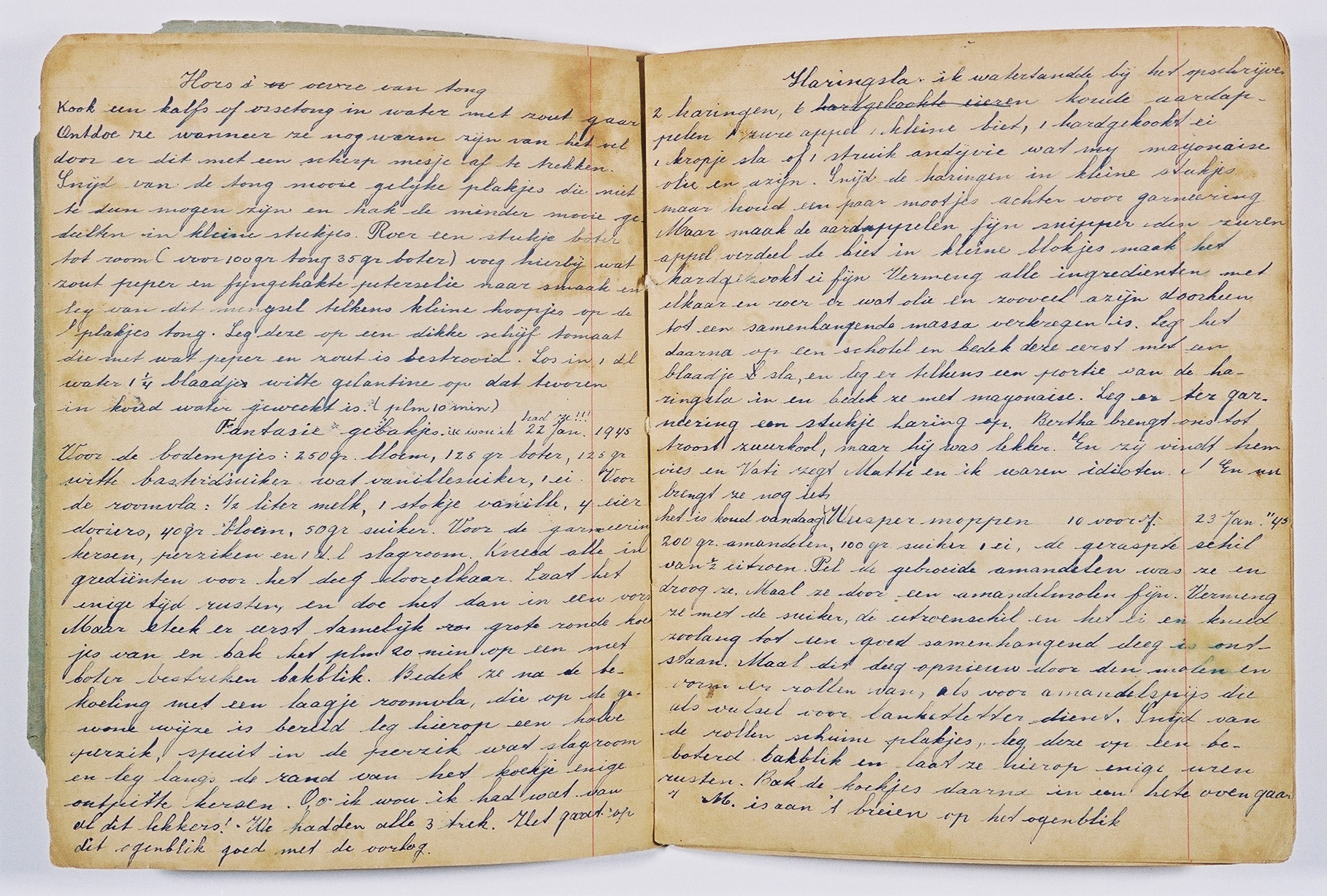 Pages from a diary written by Susie Grunbaum Schwarz while in hiding.  She disguised the diary in the form of a cookbook written in several languages.