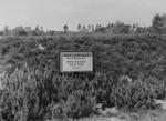 A sign marking a mass grave in Bergen-Belsen.