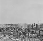 Survivors gather behind a barbed wire fence in Bergen-Belsen.
