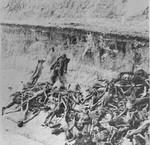 A mass grave in Bergen-Belsen concentration camp.