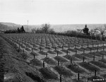 View of the cemetery at the Hadamar Institute, where victims of the Nazi euthanasia program were buried in mass graves.