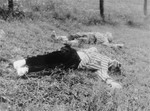The bodies of two Czech prisoners shot in the Wiener Graben quarry at Mauthausen.