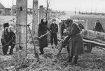 Jewish women working on an agricultural plot in the Kovno ghetto.