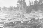 View of rows of large logs lying side-by-side in the Klooga concentration camp.