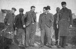 A group of Jewish prisoners in the Janowska concentration camp.