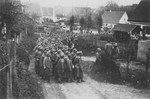 German troops who surrendered to Japanese-American troops with the 522nd Field Artillery Battalion receive orders to go home after they have been disarmed.