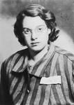 Portrait of Agnes Laszlo in her camp uniform taken shortly after liberation.